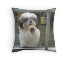 MAISIE - OUR LITTLE DEVANGEL Throw Pillow
