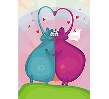 elephant wedding Photographic Print