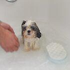 Maisie's  Bathtime by ANNIESUNSHINE