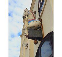 Horse To No Where Photographic Print