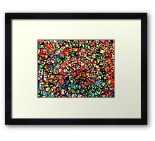 In the world as we see it and Not missed it :) Framed Print