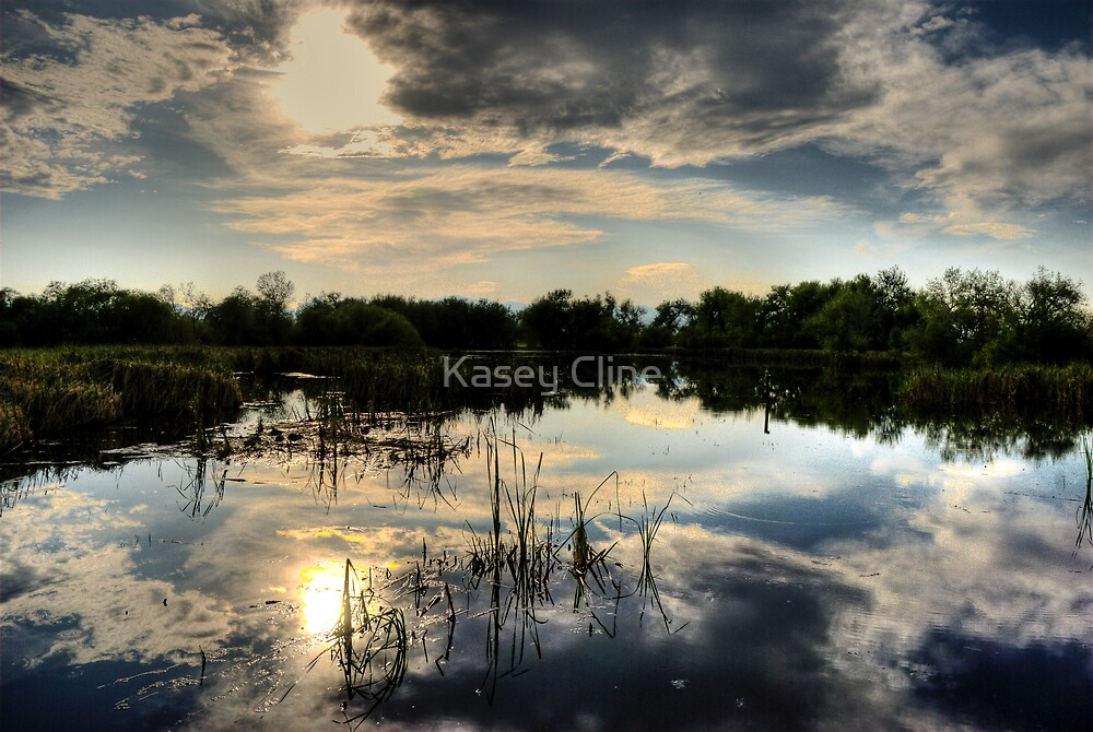 My Serenity! by Kasey Cline