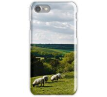 Peaceful Countryside iPhone Case/Skin
