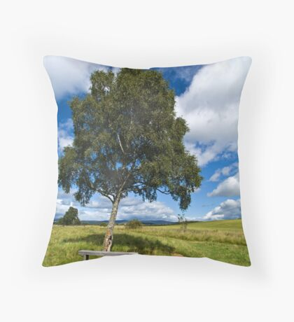 Country Bench Throw Pillow