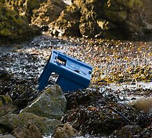 Washed-up Crate by Nigel Bangert