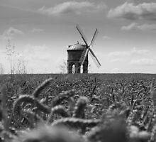 Corn & Chesterton Windmill  by Mark Mitrofaniuk