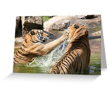 Playing in the pond Greeting Card