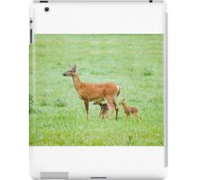 momma deer with two fawns iPad Case/Skin