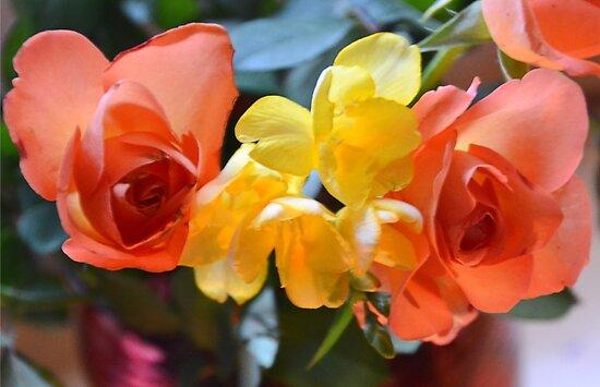 Oranges And Lemons by lynn carter