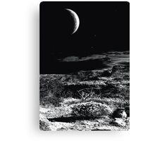Desert Moon Canvas Print