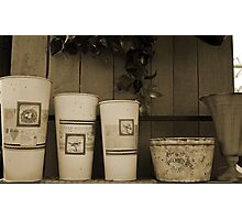 just a collection of planters Photographic Print