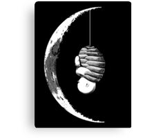 mooncocoon Canvas Print