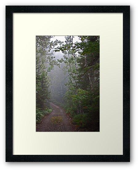 The Foggy Road  by Joanne  Bradley
