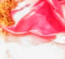 Silky Rose Sticker