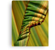 Flax Ribbon Canvas Print