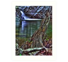 Shan creek swimming hole Art Print