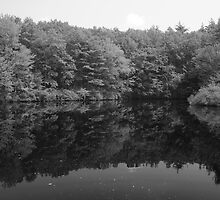 Walden Pond by AntonLee