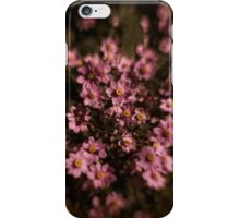 Pink Anemone Dreams iPhone Case/Skin