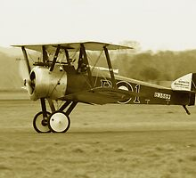 Sopwith Camel by Mike Warman