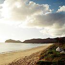 Lord Howe Island Series 7 by Amanda Cole