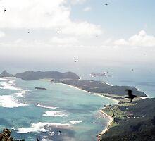 Lord Howe Island Series 8 by Amanda Cole