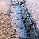 in the gutter by scarlettheartt