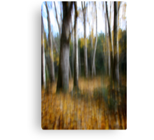 Fall at your feet Canvas Print