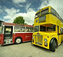 Red Bus Yellow Bus  by Rob Hawkins