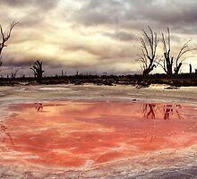 Salt stains. by Steve Chapple