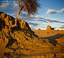 Mungo National Park by Lynn and Lee Deamer