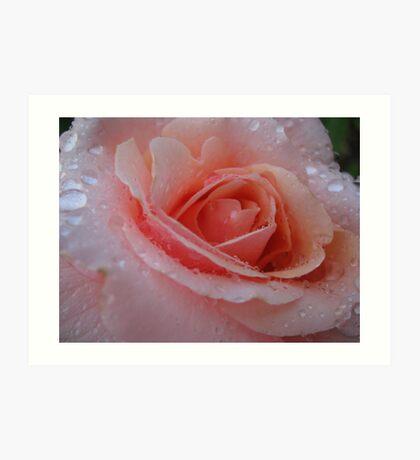 Pink Dew by Dawn Art Print