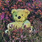 The Lost Teddybear   [ please read notes  ] by relayer51