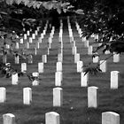 Arlington National Cemetery by artisandelimage