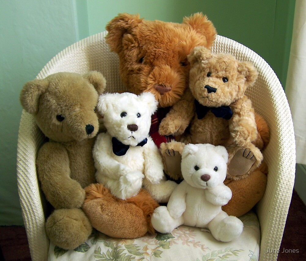 A Family of Teddy Bears by June Jones