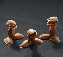 Pistachio Nuts by Colin Bentham