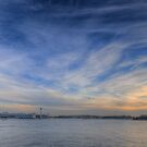 Paintbrush  - Sydney Harbour - The HDR Experience by Philip Johnson