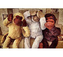 The Three Wise Monkey's ! ... Photographic Print