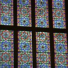 stained glass by armadillozenith