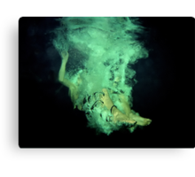 Underwater poetry Canvas Print