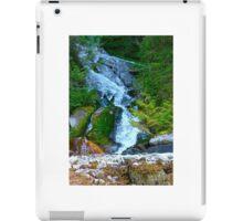 Bishop Bay Falls iPad Case/Skin