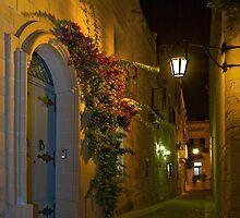 Mdina Malta Green Cast Alley by Edwin  Catania