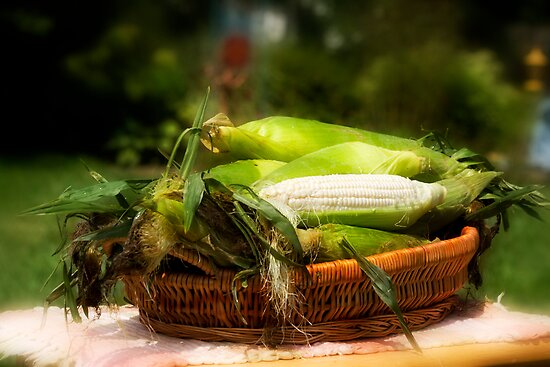 Corn Anyone? by Trudy Wilkerson