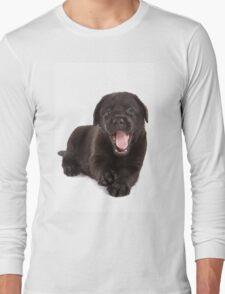 Black labrador puppy yawns Long Sleeve T-Shirt