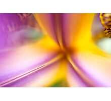 Up Close and Personal Photographic Print