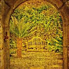 The Fernery by Catherine Hamilton-Veal  ©