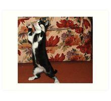 Dancing to YMCA Art Print