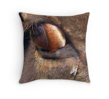Eye of an American Bison with a Grey Flesh Fly  Throw Pillow