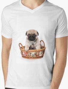 Beige pug puppy Mens V-Neck T-Shirt