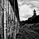 wrong side of tracks by dennis william gaylor