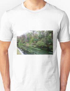 Down Stream, Rock Springs T-Shirt